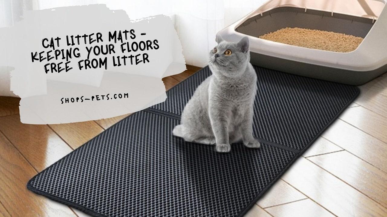 Cat Litter Mats - Keeping Your Floors Free From Litter