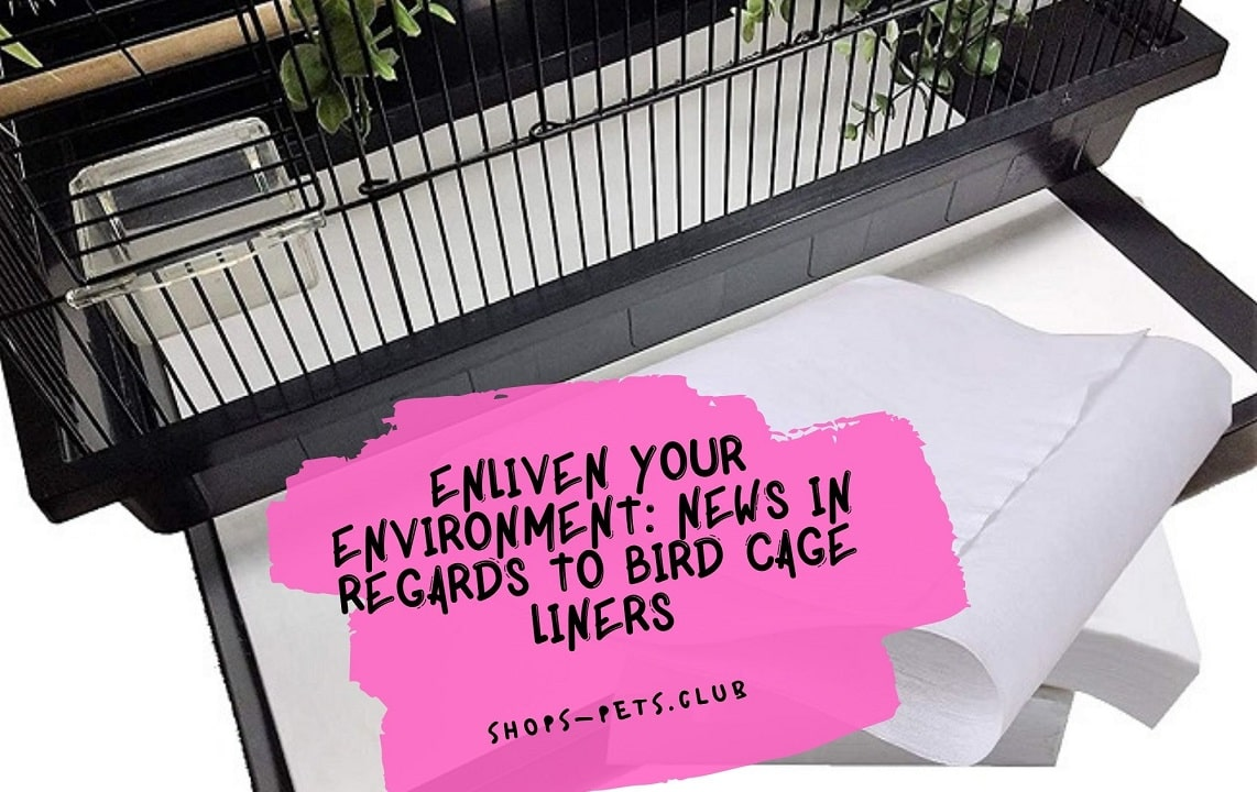 Enliven Your Environment News in Regards to Bird Cage Liners