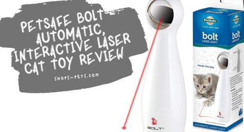PetSafe Bolt - Automatic, Interactive Laser Cat Toy Review