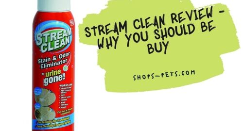 Stream Clean Review - Why you Should Be Buy
