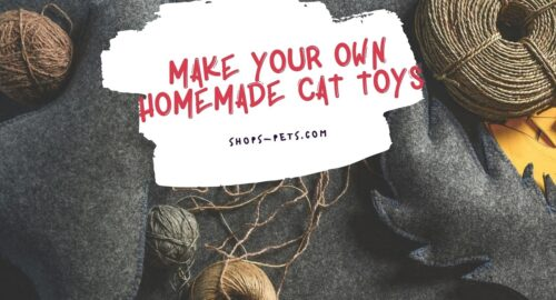 Make Your Own Homemade Cat Toys